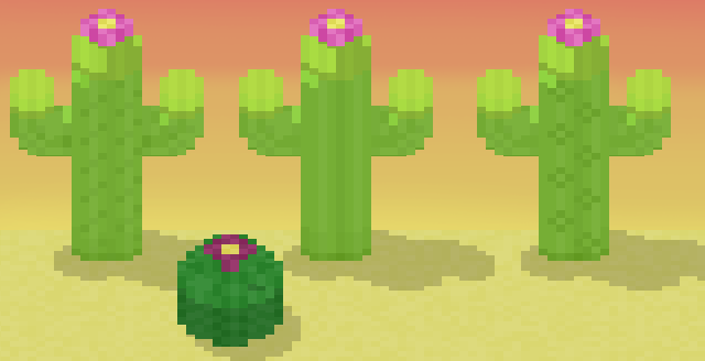 Cacti_Featured